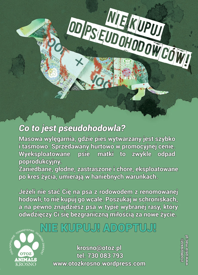 A6ulotka-PDF